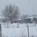 Öklömnyi pelyhekben esett a hó Szegeden