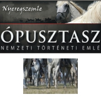 Kárpát-medencei lovas hagyományőrző találkozó Ópusztaszeren – részletes programmal