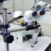 Közös laborfejlesztést kezd Szeged és Temesvár