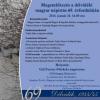 Megemlékezés a délvidéki magyar népírtás 69. évfordulóján