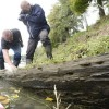Elsűllyedt bőgőshajók maradványaira bukkantak a Tiszában Szolnoknál
