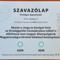 A londoni magyar migráns hangja
