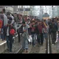 Álljon meg a menet! – díjnyertes dokumentumfilm a bűnvándor-válságról